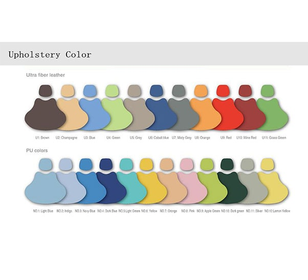 upholstery color 1